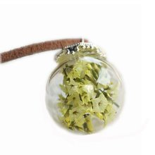 Dried Flower Pendant Necklace Special Necklace Good Gift