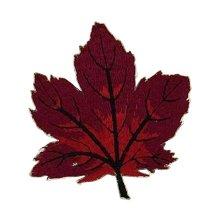 6 Pcs Exquisite Applique Patches DIY Applique Embroidered Patches, Red Leaf