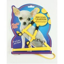 1 x Small Dog Lead & Harness Blue, Pink Or Yellow Toy - Adjustable Puppy Set -  small dog adjustable harness lead puppy set pet leash rope safe cord