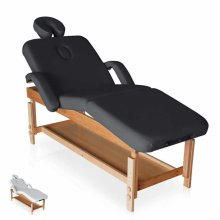 Professional Massage Table Adjustable Reclining MASSAGE PRO