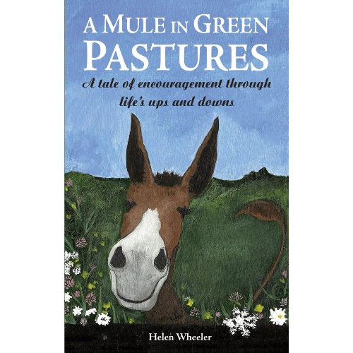 A Mule in Green Pastures