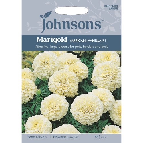 Johnsons Seeds - Pictorial Pack - Flower - Marigold (African) Vanilla F1 - 20 Seeds