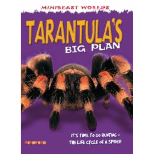 Mb Tarantulas Big Plan (Mini Beasts)