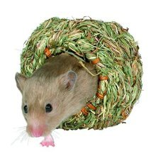 Trixie Grass Nest For Hamsters, 10cm - Hamsters Mouse 10cm Natural Mice -  grass nest hamsters trixie mouse 10 cm natural mice