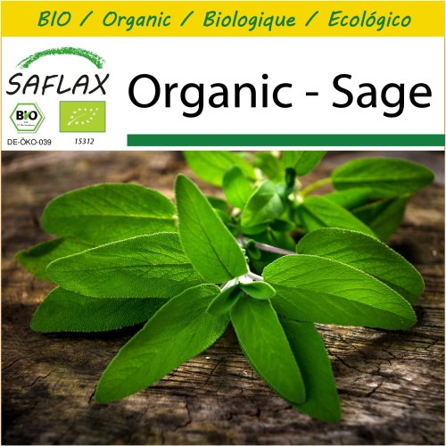 SAFLAX Potting Set - Organic - Sage - 60 certified organic seeds  - Salvia