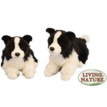 Large Collie Plush Soft Toy - Dog Border Puppy 26cm Living Nature -  plush collie toy dog soft border puppy 26cm large living nature