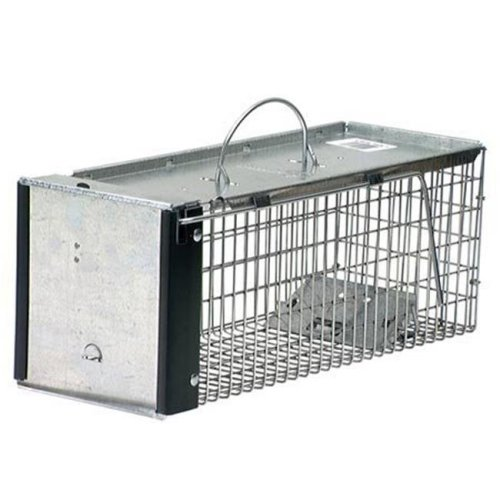 Woodstrean Corp W75 0745 16 in. One Door Chipmunk And Squirrel Trap