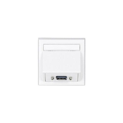 VivoLink WI221196 DisplayPort