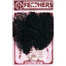Ostrich Feathers 2/Pkg-Black