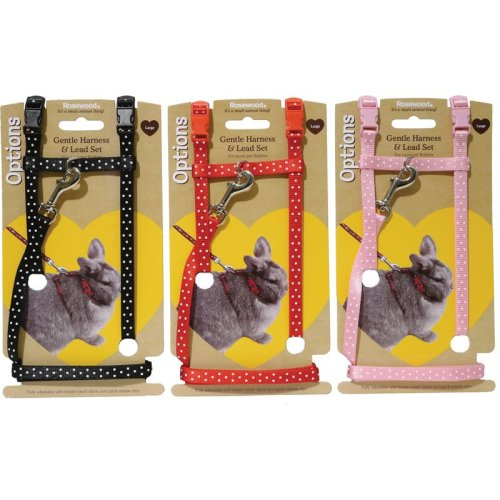 Options Small Animal Harness & Lead Set Polka Dot Large (Pack of 3)